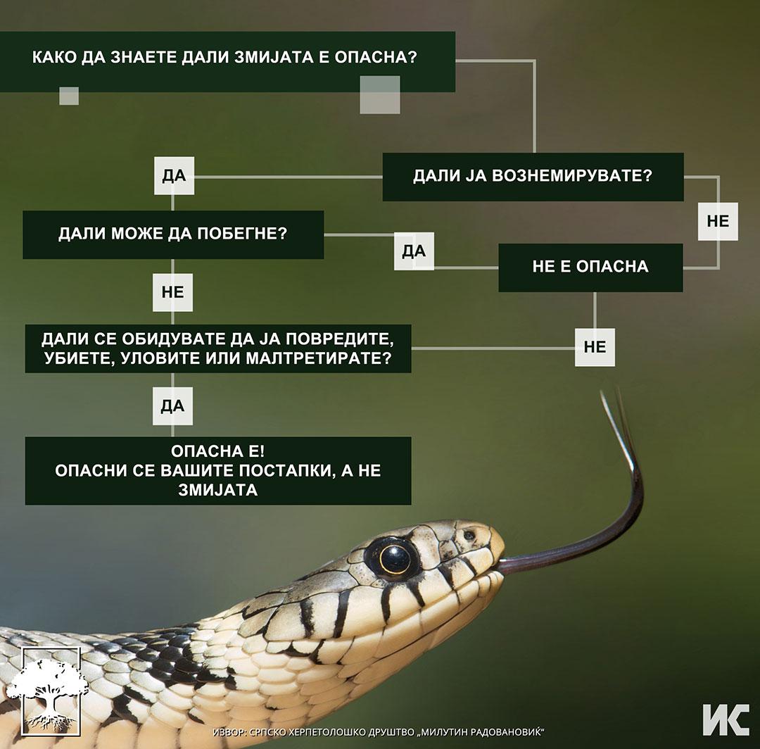 Odnesuvanje so zmii vo prirodata
