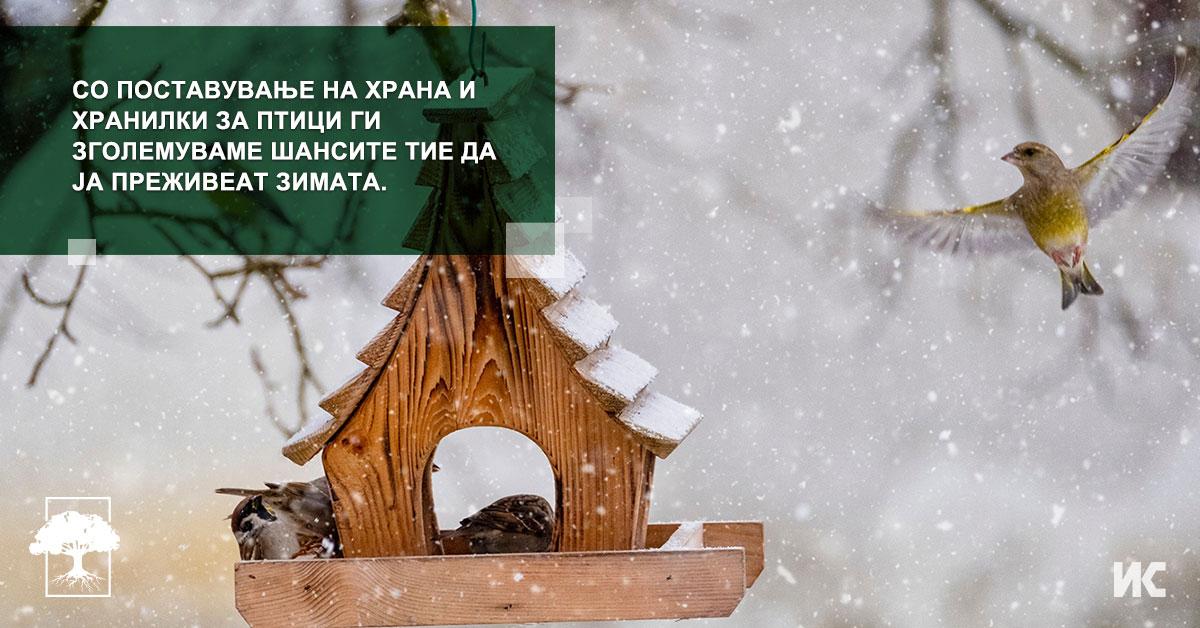 Zimsko prihranuvanje na pticite FB