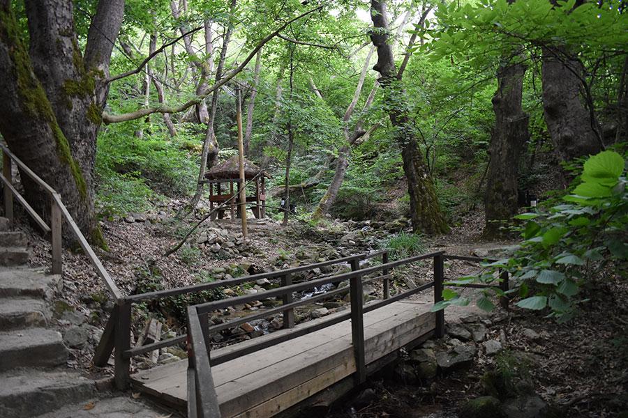 kolesinski vodopadi spomenik na prirodata na koj treba da vnimavame 3