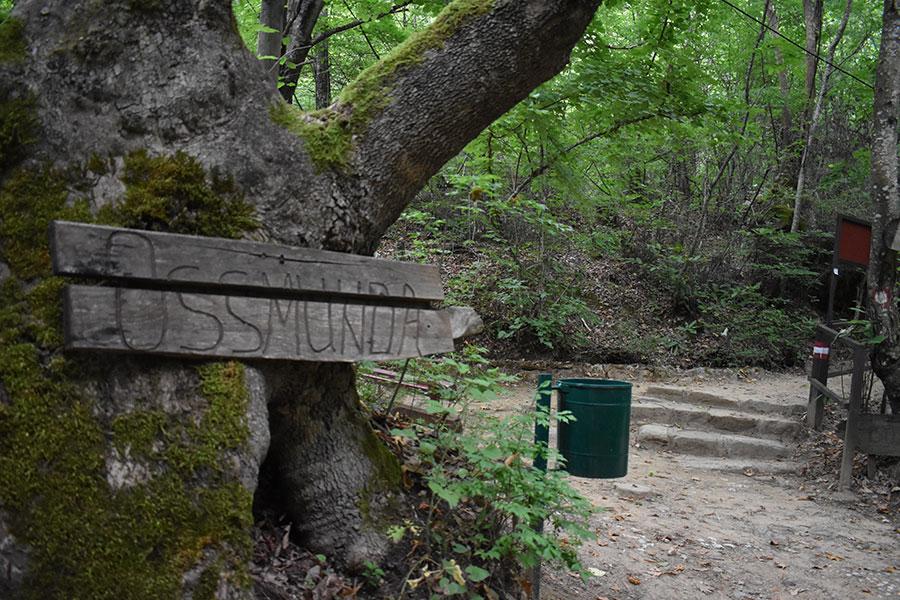 kolesinski vodopadi spomenik na prirodata na koj treba da vnimavame 6