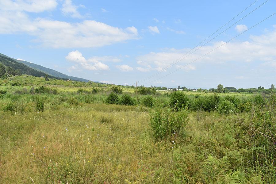 monospitovsko blato poslednoto mocuriste vo makedonija 9