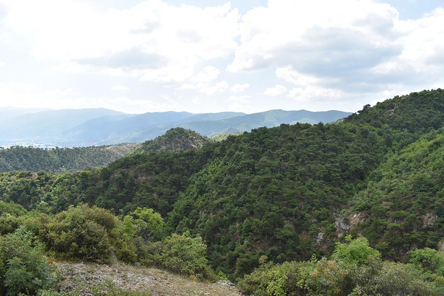 park na prirodata cam ciflik nepoznatata makedonska suma nad strumica 1