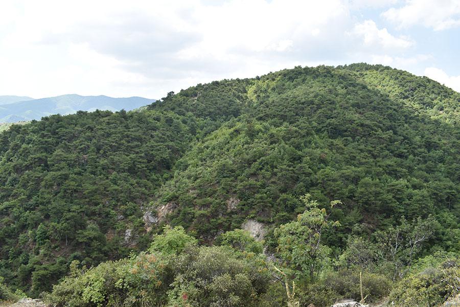 park na prirodata cam ciflik nepoznatata makedonska suma nad strumica 3