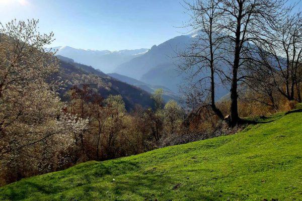 prirodnoto-bogatstvo-na-selo-zirovnica-tairovska-reka-493EA572F-F36D-C8A1-F59B-F00181C3D8E5.jpg