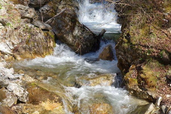 prirodnoto-bogatstvo-na-selo-zirovnica-tairovska-reka-63239892B-1A19-9E11-3325-F0DD1E45D0F4.jpg