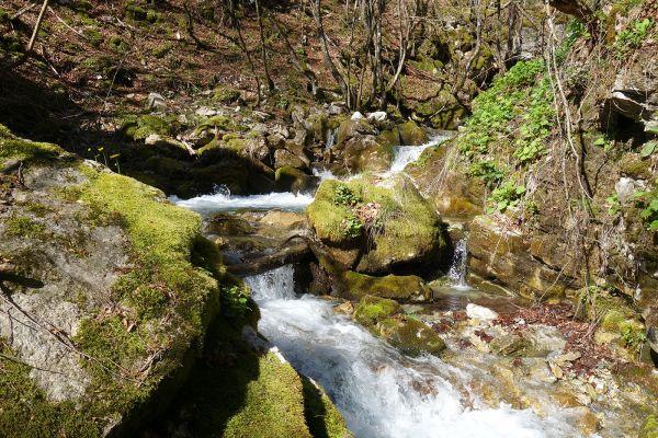 prirodnoto-bogatstvo-na-selo-zirovnica-tairovska-reka-867386C45-1723-7D0C-0C91-1E9B26118BB7.jpg