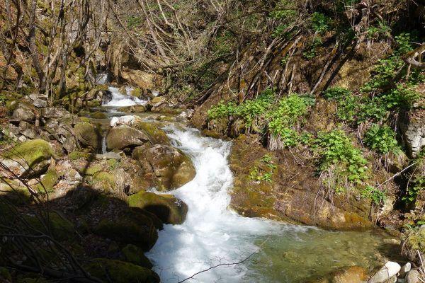 prirodnoto-bogatstvo-na-selo-zirovnica-tairovska-reka-167C12A1BC-AD39-FBA5-B16B-43638DB25DAC.jpg