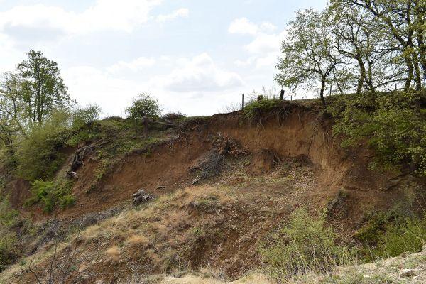 niz-planinarskite-pateki-na-skopska-crna-gora-314F8BC49-3ED2-0471-4B5E-BFFDA63E0E3E.jpg