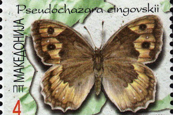 makedonskata-priroda-niz-postenskite-marki-1946BC7D5-D046-1148-633B-55A533121F30.jpg
