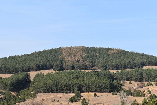 mariovo-centar-na-geoloskoto-i-bioloskoto-bogatstvo-na-makedonija-76E9A950A-DB03-419E-64B9-BAAED0189F8D.jpg