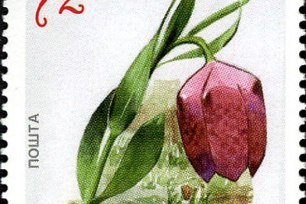 makedonskata-priroda-niz-postenskite-marki-167BAB8F32-5F31-67B6-A4F7-B354776967AB.jpg