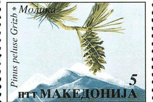 makedonskata-priroda-niz-postenskite-marki-20F6D27A51-07C3-8C16-2DFE-8AD0579C61A9.jpg