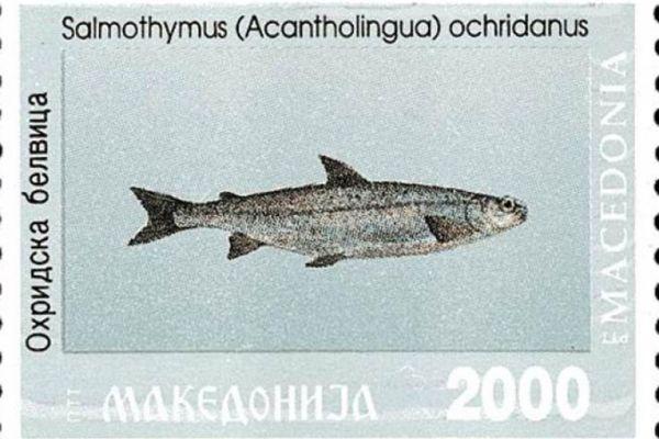 makedonskata-priroda-niz-postenskite-marki-229BF8FD65-C202-21BC-8072-AFF090CBCC17.jpg