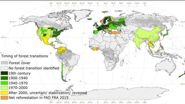 pricinata za rastot na sumski povrsini e faktorot na poleznost a zgolemeno nivo na CO2 2